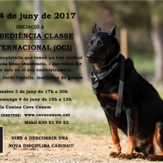 SEMINARI D'INICIACIÓ A L'OBEDIÈNCIA CLASSE INTERNACIONAL (OCI) - 3 i 4 de juny de 2017